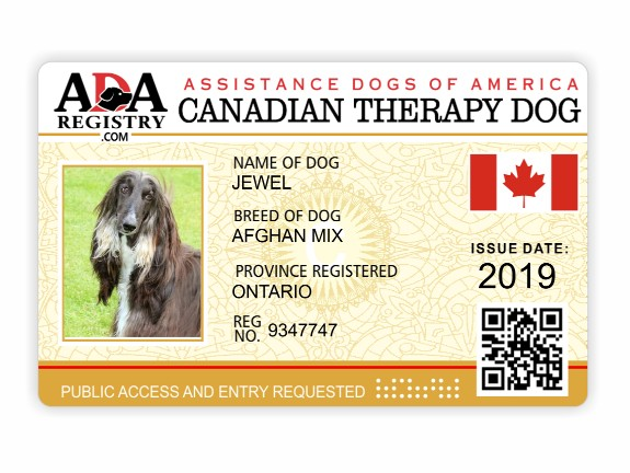 Law Information Ada Assistance Dog Registry