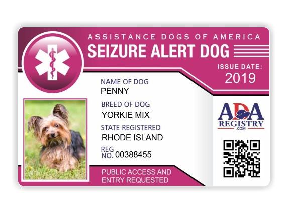 Image of: Card For Elliebelly Emotional Support Dog Information Service Dog Registry