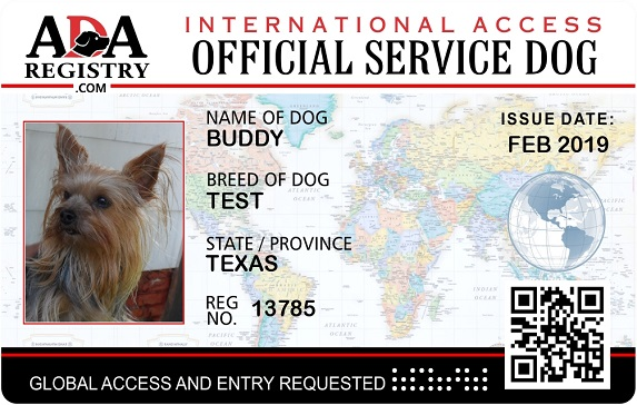 photograph regarding Printable Ada Service Dog Card titled Instantaneous Registration ADA Suggestions Doggy Registry